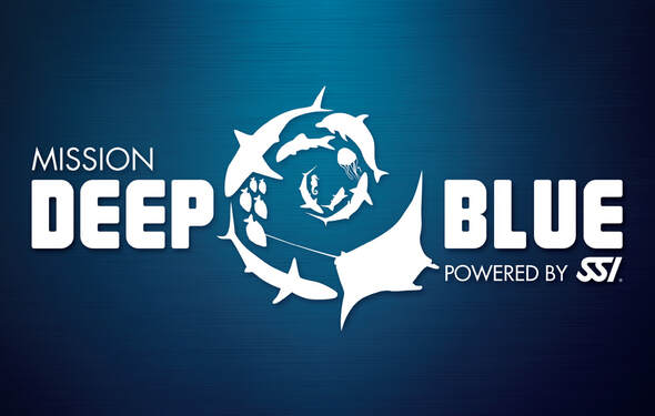 Link to SSI Mission Deep Blue web Page