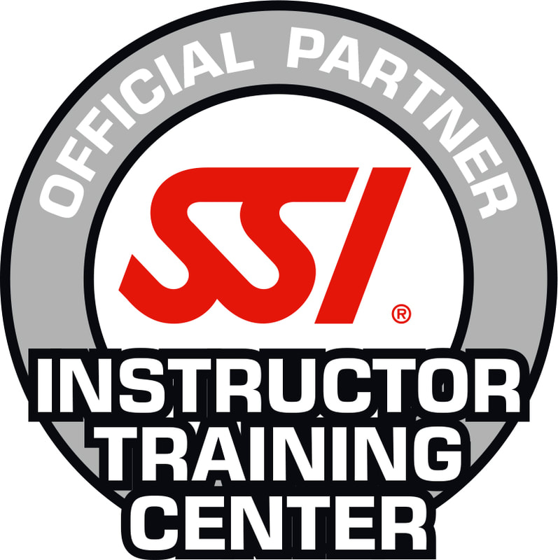 Image of the SSI Instructor Training Centre logo