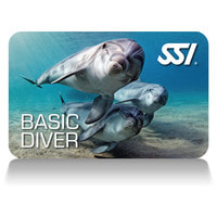 Link To SSI Basic Diver course