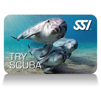 SSI Try Scuba Diving Recognition card